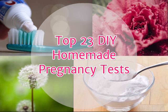 What is a homemade pregnancy test?