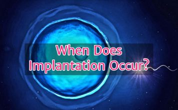 When does implantation occur?