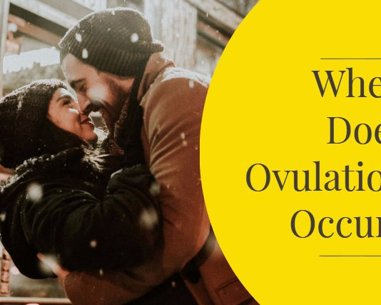 When does ovulation occur?