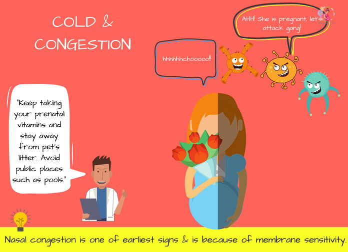 Cold & Congestion