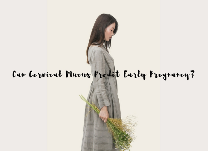 Can Cervical Mucus Predict Early Pregnancy?