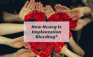 How Heavy Is Implantation Bleeding
