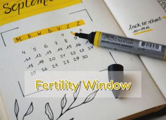 Fertility Window: How To Calculate Your Fertile Days?