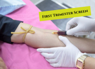 First Trimester Screen