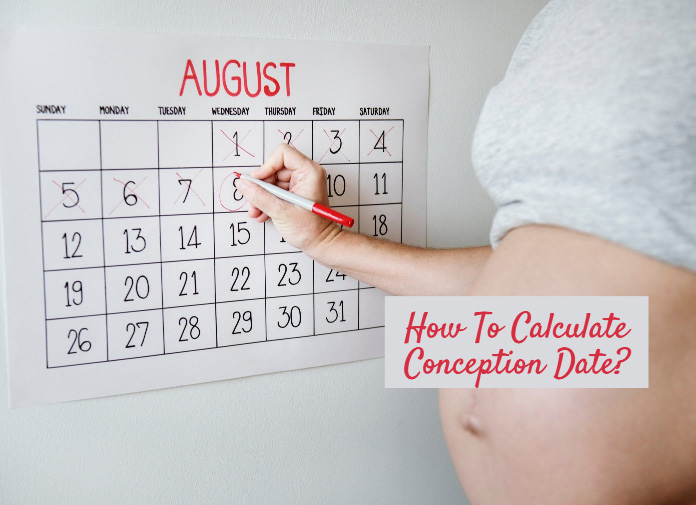 Conception Calculator: Can I Find Out The Exact Day Of Conception?