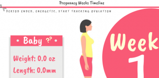 1 Week Pregnant Development