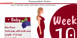 10 Weeks Pregnant: What To Expect?