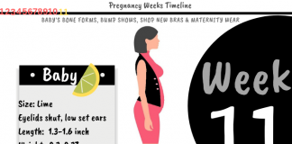 11 Weeks Pregnant: What To Expect?