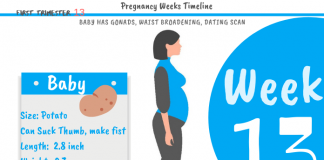 13 weeks pregnant: What to expect?