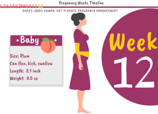 12 Weeks Pregnant: What To Expect?